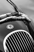 Roadster Photos - 1953 Jaguar XK 120SE Roadster Grille Emblem by Jill Reger