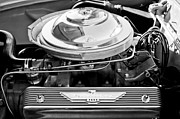 Thunderbird Photos - 1955 Ford Thunderbird Engine by Jill Reger