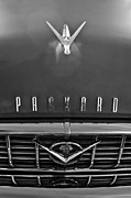 Collector Hood Ornament Posters - 1955 Packard 400 Hood Ornament Poster by Jill Reger