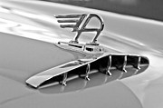 Door Photos Framed Prints - 1957 Austin Cambrian 4 Door Saloon Hood Ornament Framed Print by Jill Reger