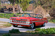 Family Car Framed Prints - 1959 Chevrolet Impala Framed Print by Dave Koontz