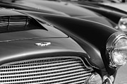 1960 Photo Metal Prints - 1960 Aston Martin DB4 Series II Grille - Hood Emblem Metal Print by Jill Reger