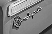 1962 Photos - 1962 Chevrolet Impala Emblem by Jill Reger