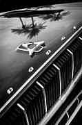 1962 Photos - 1962 Dodge Polara 500 Grille - Hood Emblem by Jill Reger