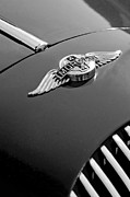 Morgan Acrylic Prints - 1964 Morgan 44 Hood Ornament Acrylic Print by Jill Reger