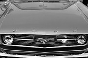 Front End Framed Prints - 1966 Ford Mustang Front End Framed Print by Jill Reger
