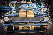 Gold Ford Prints - 1966 Ford Shelby Mustang Hertz Edition  Print by Rich Franco