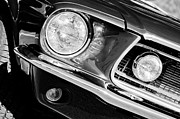 Gt-350 Posters - 1968 Ford Mustang Cobra GT 350 Head Light Poster by Jill Reger