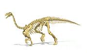 3d Rendering Of A Plateosaurus Dinosaur Print by Leonello Calvetti