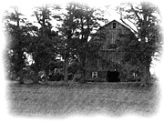 Barn Drawing Prints - A Farmers Life 2 Print by Rhonda Barrett