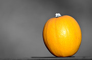 Colorfull Posters - A mini pumpkin  Poster by Tommy Hammarsten