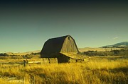 Fences Prints - A Montana Barn Print by Jeff  Swan
