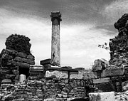 Roman Ruins Metal Prints - A Single Column Metal Print by Mel Steinhauer