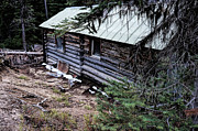 Cabin Wall Prints - Abandon Miners Cabin Print by Ron Roberts