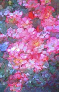 Floral Prints - Abstract 279 Print by Pamela Cooper
