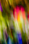 Green Greeting Cards Prints - Abstraction of Butterflies Print by Jon Glaser