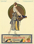 Candy Drawings - Adams California Fruit Gum 1920s Usa by The Advertising Archives