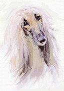 Dogs Digital Art Metal Prints - Afghan Hound Metal Print by Jane Schnetlage
