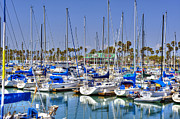 David  Zanzinger - Alamitos Bay CA Marina