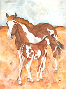 Catherine Basten - American Paint Mare and...