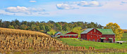 Red Barns Photo Prints - Amish Farm Print by Jack Schultz