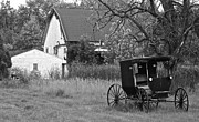 Horse And Buggy Framed Prints - Amish Living Framed Print by Robert Harmon