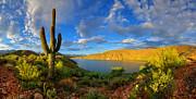 Apache Lake Hillside Morning Light Print by  Reid Helms