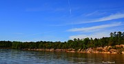 Florida Rivers Photo Prints - Apalachicola River Print by Debra Forand
