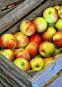 Apples Digital Art Prints - Apples Print by Brian Mollenkopf
