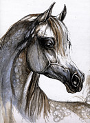 Grey Drawings Metal Prints - Arabian Horse Metal Print by Angel  Tarantella