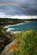 Rainbow Photo Posters - Atlantic coast in Brittany Poster by Elena Elisseeva