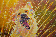 Yellow Lab Paintings - August by Kimberly Santini