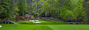 Amen Corner Photos Posters - Augusta National Golf Club Hole 12 Golden Bell Panoramic Poster by Phil Reich