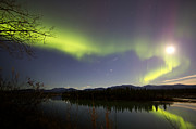 Yukon River Prints - Aurora Borealis And Full Moon Print by Joseph Bradley