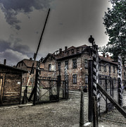 Free Will Photo Posters - Auschwitz Poster by Ian Hufton