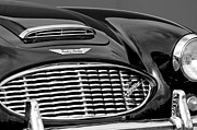 Austin Photo Prints - Austin-Healey 3000 Grille Emblem Print by Jill Reger