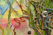 Tree Of Life Drawings - Autotroph detail 5 by Regina Valluzzi