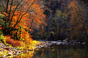 Bakers Island Prints - Autumn along Elk River Print by Thomas R Fletcher