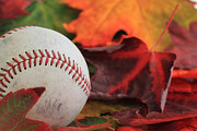 Brent Davis Posters - Autumn Baseball Poster by Brent Davis