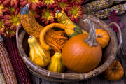 Corns Framed Prints - Autumn Basket Framed Print by Garry Gay
