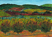 Languedoc Painting Posters - Autumn Colours Languedoc Poster by Jackie Sherwood
