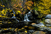 Moving Water - Autumn Falls by Mitch Shindelbower