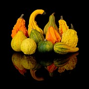 Reflection Harvest Metal Prints - Autumn Harvest Gourds Metal Print by Jim Hughes