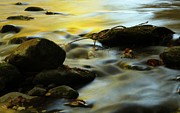 Tennesee Framed Prints - Autumn In The Water Framed Print by Dan Sproul