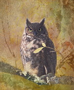 Great Horned Owl Framed Prints - Autumn Owl Framed Print by Angie Vogel