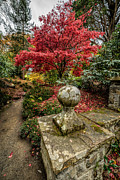 Red Sky Metal Prints - Autumn Path Metal Print by Adrian Evans