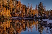 Autumn Reflected Print by Mike Reid