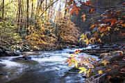Debra and Dave Vanderlaan - Autumn Stream