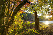 River Scenes Photos - Autumn Trail by Debra and Dave Vanderlaan