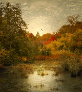 Autumn Landscape Digital Art Framed Prints - Autumn Wetlands Framed Print by Jessica Jenney
